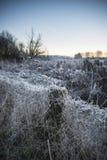 Όμορφη δονούμενη αγγλική εικόνα λιμνών επαρχίας με τον παγετό και Στοκ φωτογραφίες με δικαίωμα ελεύθερης χρήσης
