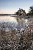 Όμορφη δονούμενη αγγλική εικόνα λιμνών επαρχίας με τον παγετό και Στοκ φωτογραφία με δικαίωμα ελεύθερης χρήσης