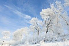 Όμορφη πάχνη του βόρειου τμήματος της Κίνας Στοκ Εικόνες