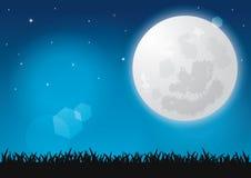 Όμορφη πανσέληνος, λάμποντας αστέρια και χλόη σκιαγραφιών τη νύχτα Στοκ Φωτογραφία
