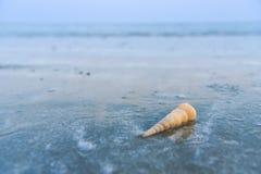 Όμορφη παραλία και λίγο κύμα με το κοχύλι και την άσπρη άμμο κάτω στοκ φωτογραφίες