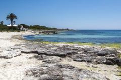 Όμορφη παραλία με την άσπρους άμμο, τους φοίνικες και τους βράχους γρανίτη, μπλε Μεσόγειος, simplyt παράδεισος, Menorca, Ισπανία Στοκ εικόνα με δικαίωμα ελεύθερης χρήσης