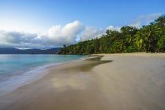Όμορφη παραλία παραδείσου, anse soleil, Σεϋχέλλες Στοκ εικόνα με δικαίωμα ελεύθερης χρήσης