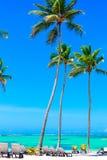 Όμορφη παραλία από το ξενοδοχείο Barcelo, Punta Cana Στοκ Φωτογραφία