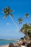 Όμορφη παραλία στο νησί Samui, Ταϊλάνδη Στοκ φωτογραφίες με δικαίωμα ελεύθερης χρήσης