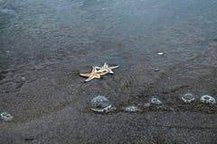 Όμορφη παραλία της Ταϊλάνδης Στοκ Εικόνα