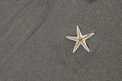 Όμορφη παραλία της Ταϊλάνδης Στοκ εικόνα με δικαίωμα ελεύθερης χρήσης