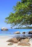 Όμορφη παραλία Anse Λάτσιο Στοκ εικόνα με δικαίωμα ελεύθερης χρήσης