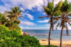 Όμορφη παραλία Anse Takamaka του νησιού Mahe, Σεϋχέλλες Στοκ φωτογραφίες με δικαίωμα ελεύθερης χρήσης