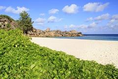 Όμορφη παραλία Grande Anse Στοκ Εικόνα