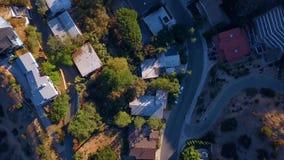 Όμορφη περιοχή του Λος Άντζελες με τους μακριούς φοίνικες από την πλευρά του δρόμου απόθεμα βίντεο