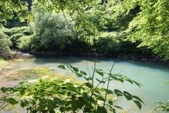 Όμορφη πηγή ljubljanica στο vrhnika, Σλοβενία στοκ εικόνες