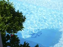 Όμορφη πισίνα κατά τη τοπ άποψη Στοκ Εικόνα