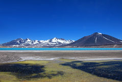 Όμορφη πράσινη λιμνοθάλασσα, Laguna Verde, κοντά στο πέρασμα Σαν Φρανσίσκο και Nevado Ojos Del Salado, Atacama, Χιλή βουνών Στοκ Εικόνες
