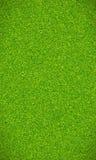 Όμορφη πράσινη σύσταση χλόης Στοκ Φωτογραφία