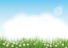 Όμορφη πράσινη χλόη, λουλούδια, χνουδωτά σύννεφα και ανοικτό μπλε ουρανός Στοκ εικόνες με δικαίωμα ελεύθερης χρήσης