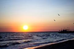 Όμορφη πτήση των πουλιών πέρα από το κύμα θάλασσας, στον ήλιο ρύθμισης, των κυμάτων κοντά επάνω στο ηλιοβασίλεμα με έναν φωτεινό  Στοκ Φωτογραφίες