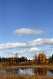 όμορφη πτώση ημέρας Στοκ εικόνες με δικαίωμα ελεύθερης χρήσης