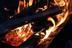 Όμορφη πυρκαγιά στη φύση στοκ εικόνα