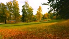 Όμορφη ρομαντική αλέα σε ένα πάρκο με τα ζωηρόχρωμα δέντρα και το φως του ήλιου φυσικό υπόβαθρο φθινοπώρου - Bilderr - φθινόπωρο  στοκ εικόνα με δικαίωμα ελεύθερης χρήσης