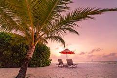 Όμορφη ρομαντική παραλία Αμμώδης παραλία εδρών κοντά στη θάλασσα Έννοια καλοκαιρινών διακοπών και διακοπών Εμπνευσμένο τροπικό υπ Στοκ φωτογραφία με δικαίωμα ελεύθερης χρήσης
