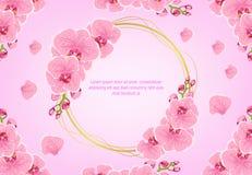 Όμορφη ρόδινη διανυσματική εικόνα υποβάθρου σχεδίων λουλουδιών διανυσματική απεικόνιση