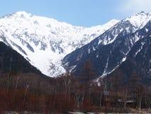 Όμορφη σκηνή με το βουνό και το δάσος χιονιού Στοκ Εικόνες
