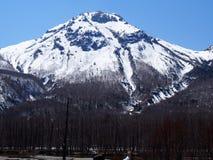 Όμορφη σκηνή με το βουνό και το δάσος χιονιού Στοκ φωτογραφία με δικαίωμα ελεύθερης χρήσης