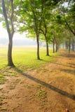 όμορφη σκηνή πάρκων Στοκ Εικόνα