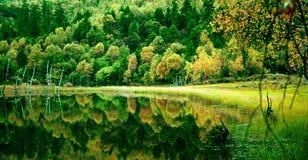 όμορφη σκηνή της Κίνας Στοκ εικόνες με δικαίωμα ελεύθερης χρήσης