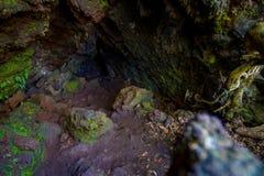 Όμορφη σκοτεινή σπηλιά στο νησί Rangitoto, φιαγμένο από ηφαιστειακούς σχηματισμούς στη Νέα Ζηλανδία Στοκ Φωτογραφίες