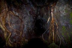 Όμορφη σκοτεινή σπηλιά στο νησί Rangitoto, φιαγμένο από ηφαιστειακούς σχηματισμούς στη Νέα Ζηλανδία Στοκ φωτογραφίες με δικαίωμα ελεύθερης χρήσης