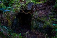 Όμορφη σκοτεινή σπηλιά στο νησί Rangitoto, φιαγμένο από ηφαιστειακούς σχηματισμούς στη Νέα Ζηλανδία Στοκ Εικόνες