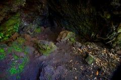 Όμορφη σκοτεινή σπηλιά στο νησί Rangitoto, φιαγμένο από ηφαιστειακούς σχηματισμούς στη Νέα Ζηλανδία Στοκ εικόνες με δικαίωμα ελεύθερης χρήσης