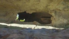 όμορφη σπηλιά πλάνο Κατασκευασμένοι τοίχοι της σπηλιάς Άποψη μέσα σε μια σπηλιά βουνών απόθεμα βίντεο