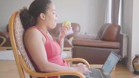 Όμορφη συνεδρίαση γυναικών αφροαμερικάνων στην πολυθρόνα που αναλύει τα διαγράμματα στο lap-top της τρώγοντας την κινηματογράφηση απόθεμα βίντεο
