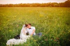 Όμορφη συνεδρίαση γαμήλιων ζευγών στο λιβάδι Copyspace στο δικαίωμα στοκ φωτογραφίες με δικαίωμα ελεύθερης χρήσης
