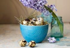 Όμορφη σύνθεση Πάσχας Αυγά ορτυκιών στο μπλε κύπελλο και τον υάκινθο λουλουδιών Στοκ φωτογραφία με δικαίωμα ελεύθερης χρήσης