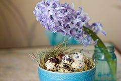 Όμορφη σύνθεση Πάσχας Αυγά ορτυκιών στο μπλε κύπελλο και τον υάκινθο λουλουδιών Στοκ εικόνα με δικαίωμα ελεύθερης χρήσης