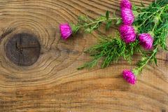 Όμορφη σύνθεση φθινοπώρου στο ξύλινο υπόβαθρο Στοκ Φωτογραφίες