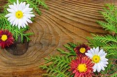 Όμορφη σύνθεση φθινοπώρου στο ξύλινο υπόβαθρο Στοκ φωτογραφία με δικαίωμα ελεύθερης χρήσης