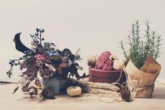 Όμορφη σύνθεση φθινοπώρου των ξηρών λουλουδιών, του δεντρολιβάνου και των φύλλων λιβαδιών Στοκ φωτογραφίες με δικαίωμα ελεύθερης χρήσης