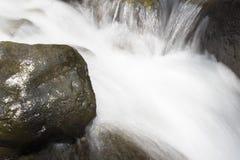 Όμορφη ταπετσαρία του καταρράκτη, γρήγορη ροή γάλακτος ρευμάτων Δύσκολος ποταμός βουνών της Αμπχαζίας στο δασικό γαλακτοκομείο κα στοκ εικόνες