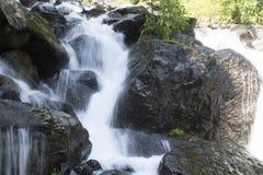 Όμορφη ταπετσαρία του καταρράκτη, γρήγορη ροή γάλακτος ρευμάτων Δύσκολος ποταμός βουνών της Αμπχαζίας στο δασικό γαλακτοκομείο κα στοκ φωτογραφία με δικαίωμα ελεύθερης χρήσης
