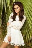 Όμορφη τοποθέτηση ομορφιάς brunette στοκ φωτογραφία