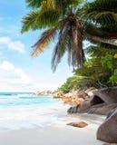 Όμορφη τροπική παραλία άμμου Στοκ Εικόνα