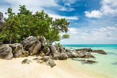 Όμορφη τροπική παραλία, νησί Karimunjawa, Ινδονησία Στοκ Εικόνα