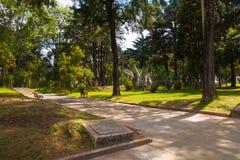 Όμορφη υπαίθρια άποψη εθνικό να περιβάλει πάρκων της φύσης, δέντρα, στη Μπογκοτά Στοκ Φωτογραφίες