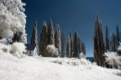 Όμορφη υπερφυσική άποψη του σπιτιού και των άσπρων δέντρων στοκ εικόνες