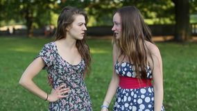 Όμορφη φίλη δύο που στέκεται σε ένα πάρκο που μιλά, πυροβολισμός κινηματογραφήσεων σε πρώτο πλάνο απόθεμα βίντεο